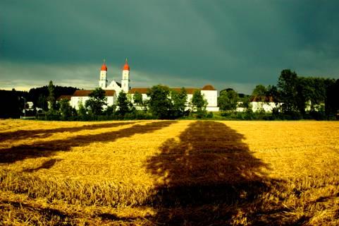 Kloster Sankt Urban Getreide Wetter