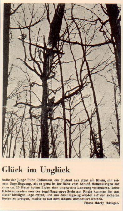 Das GB-II, HB 504 in Schaffhauser Bäumen...